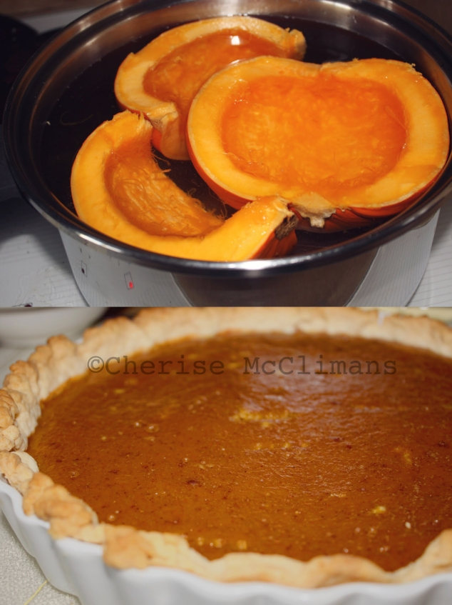 best-ever-pumpkin-pie